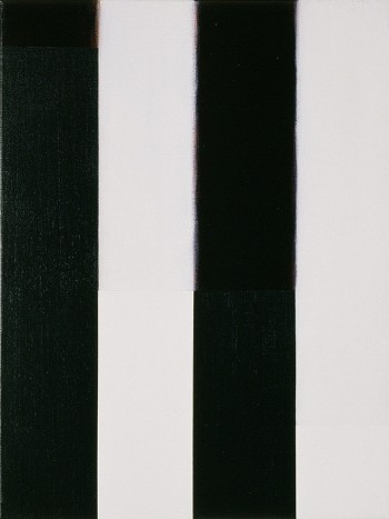 Etude: Edges #11 | 2006 Acrylic on canvas | 31 x 40.5 cm